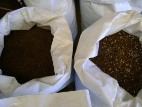 Coir Seedling Mix 20% Perlite